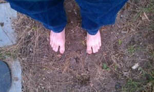 Earthing - (Image by Michael Blackmore - Mad Crow Herbals)
